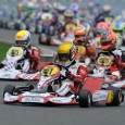 Almost all aspiring Formula 1 drivers come through karting. PaddockScout has taken a look through the various ranks to find ten teenagers worth keeping an eye on...